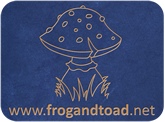 Toy Passport - FROGandTOAD Créations